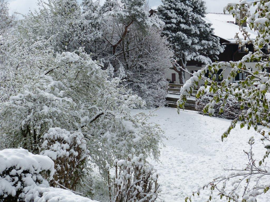 http://www.wetterstation-schaftlach.de/temp/20160427-3.jpg
