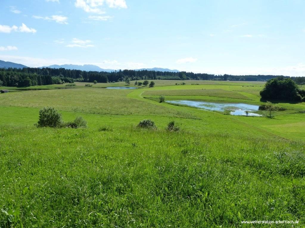 http://www.wetterstation-schaftlach.de/temp/20160620-01.jpg