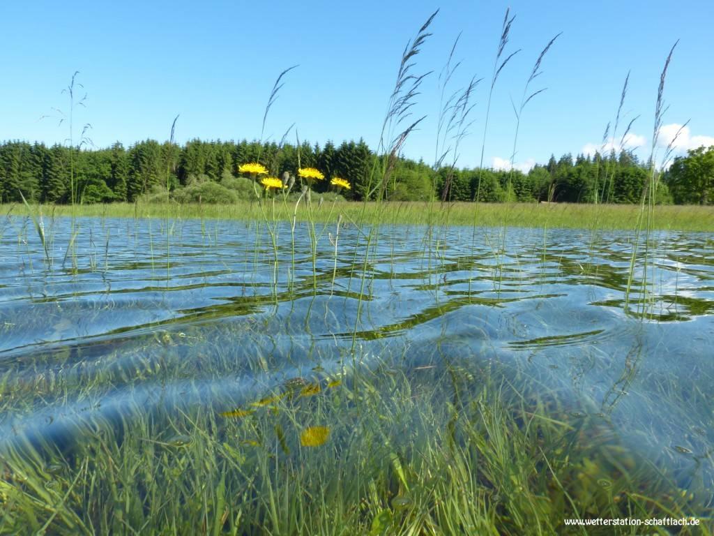 http://www.wetterstation-schaftlach.de/temp/20160620-07.jpg