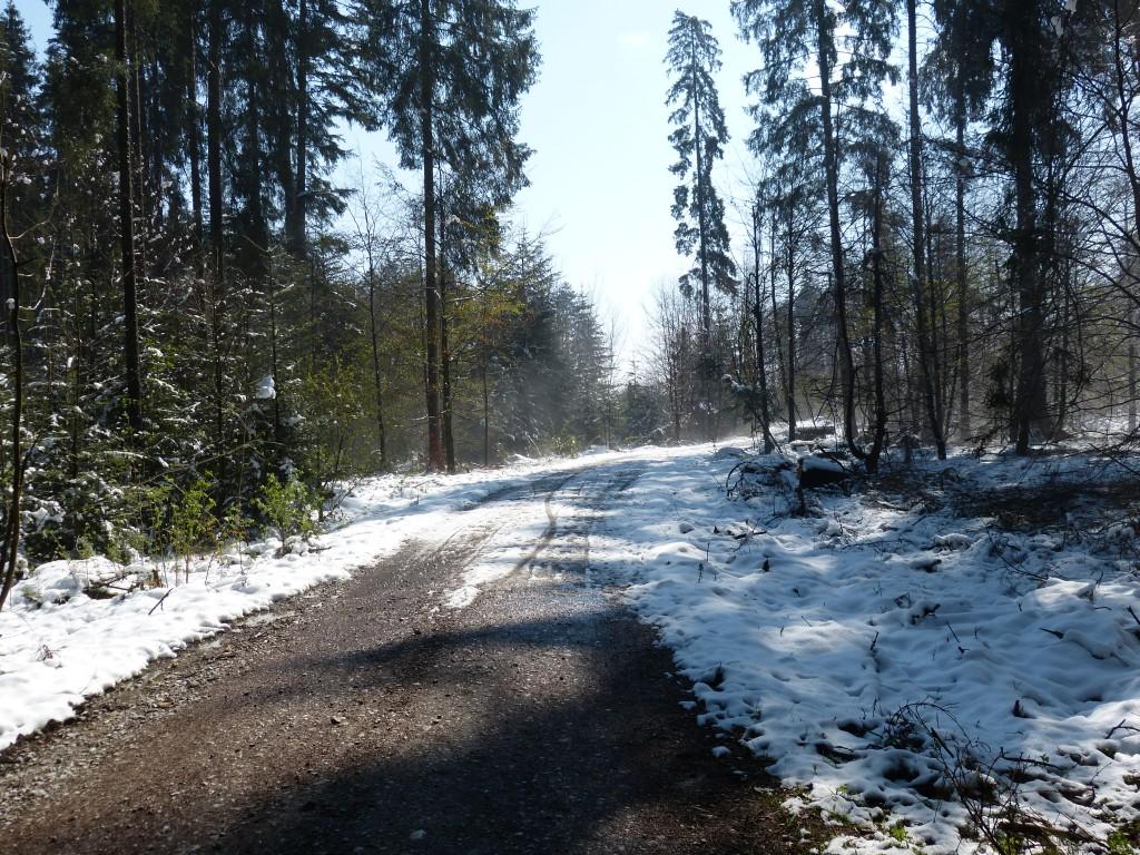 http://www.wetterstation-schaftlach.de/temp/20170429-2.jpg